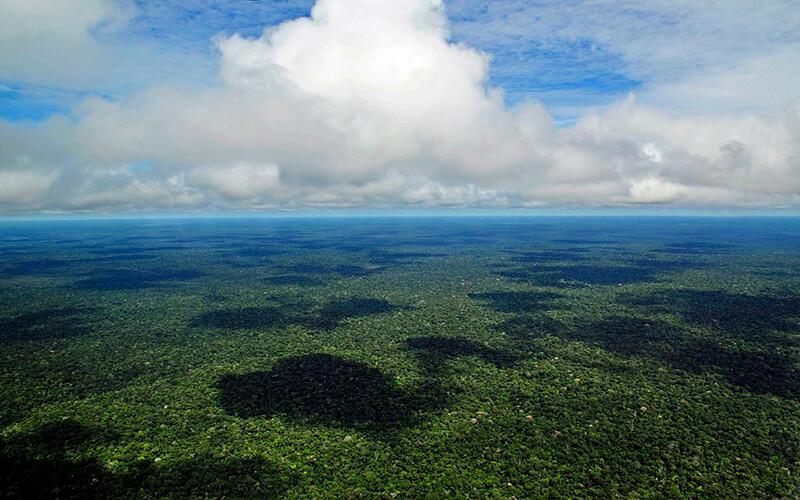 Sobrevoo pela floresta amazônica.