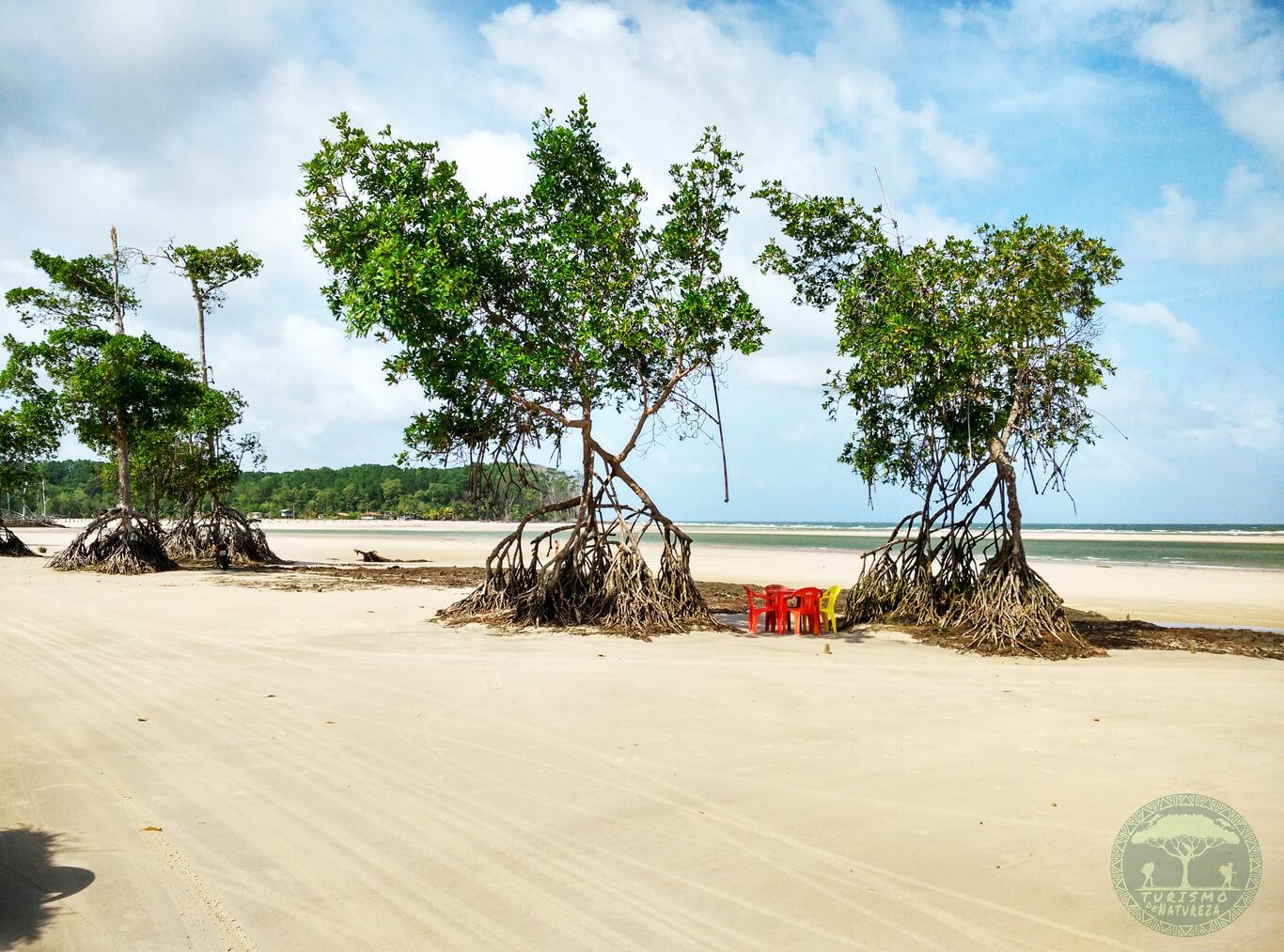 Praia da Velha em Soure no Marajó