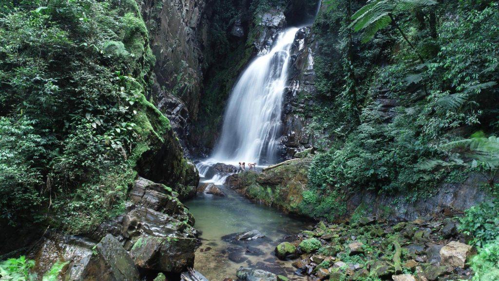 Núcleo Santana: : Cachoeira do Betarizinho ou Beija Flor.